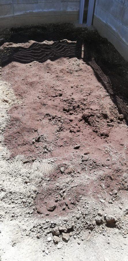 庭の角っこの土に堆肥をバラ撒く