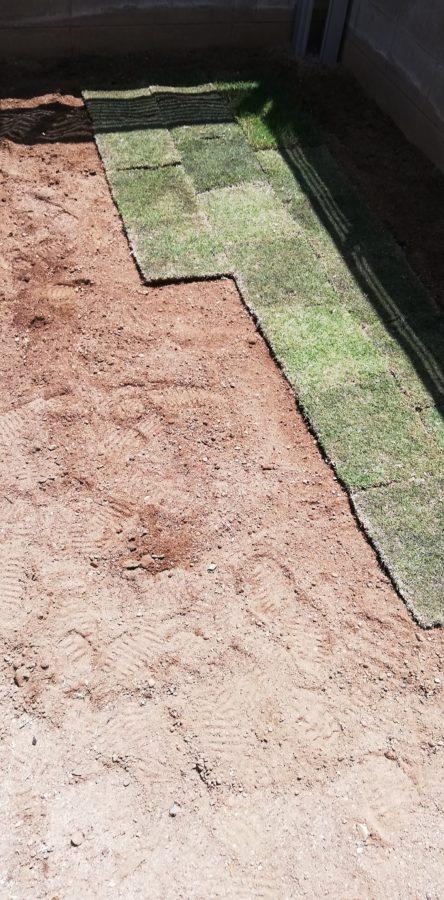 庭の角っこの土に芝生を敷いていく